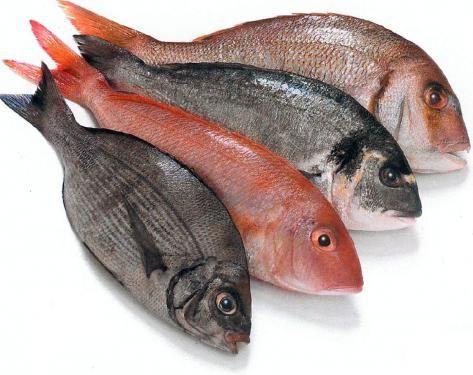 FourFish