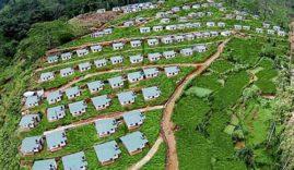 New-Village