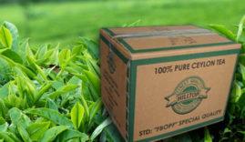 Tea-export