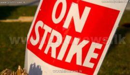 Union strike LNP