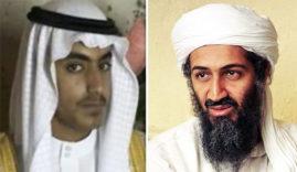 Osama bin ladan @ son LNP
